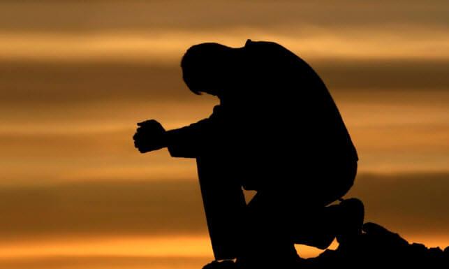 попроси бога избавить от клопов